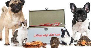 جعبه کمک اولیه حیوانات پت