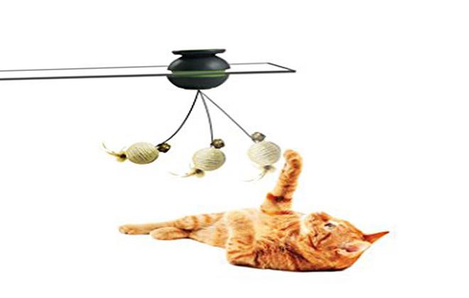 نمونه اسباب بازی گربه